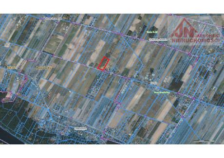 Działka na sprzedaż - Dosin, Serock, Legionowski, 15 000 m², 830 000 PLN, NET-JBK-GS-16