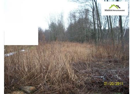 Działka na sprzedaż - Starcza, Częstochowski, 12 070 m², 120 000 PLN, NET-MDX-GS-2639