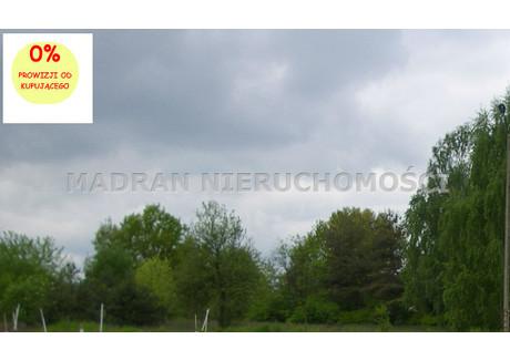 Działka na sprzedaż - Retkinia, Polesie, Łódź, Łódź M., 10 000 m², 2 000 000 PLN, NET-MDR-GS-564