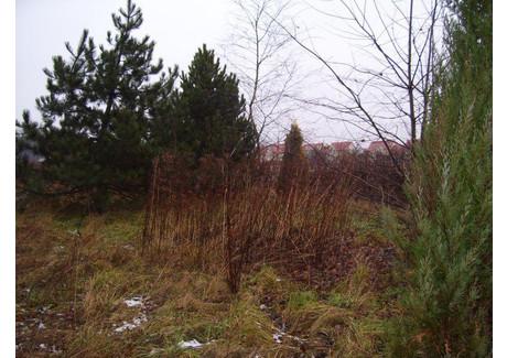 Działka na sprzedaż - Duchnów, Otwocki, 1250 m², 143 750 PLN, NET-68333