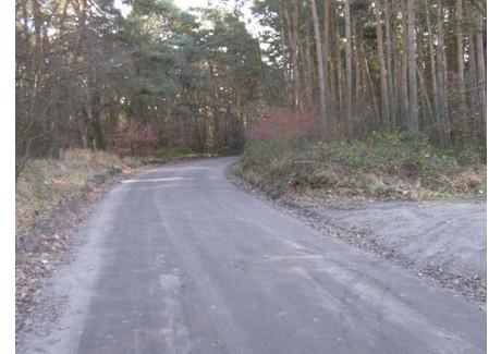 Działka na sprzedaż - Witobel, Poznański, 10 100 m², 75 000 PLN, NET-267309