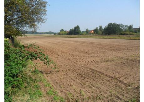 Działka na sprzedaż - Komprachcice, Opolski, 1032 m², 89 999 PLN, NET-323440162