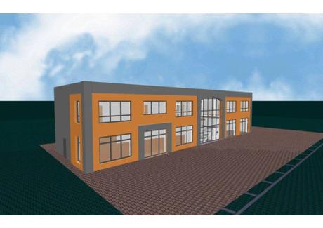 Lokal do wynajęcia - Strzelce Opolskie, Strzelecki, 170 m², 3000 PLN, NET-207570162
