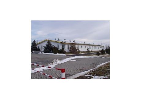 Fabryka, zakład do wynajęcia - Złotoryja, Złotoryjski (pow.), 896 m², 6720 PLN, NET-000