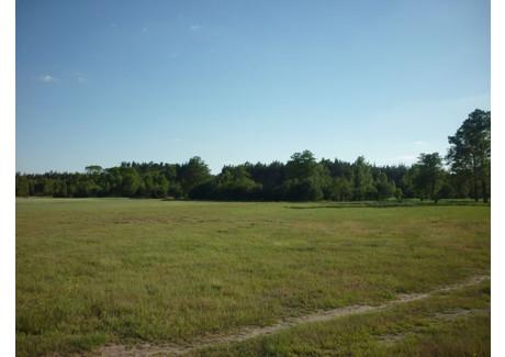 Działka na sprzedaż - Kornelin, Szubin, Nakielski, 4175 m², 126 000 PLN, NET-183D