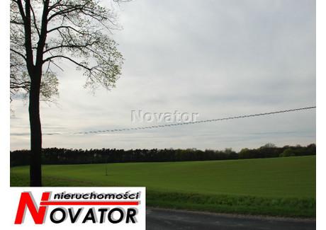 Działka na sprzedaż - Ostromecko, Dąbrowa Chełmińska, Bydgoski, 181 600 m², 11 000 000 PLN, NET-NOV-GS-105267