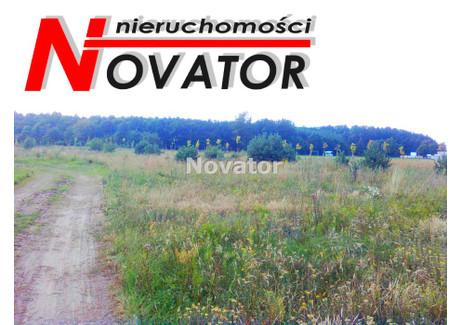 Działka na sprzedaż - Żołędowo, Osielsko, Bydgoski, 3000 m², 305 500 PLN, NET-NOV-GS-95472