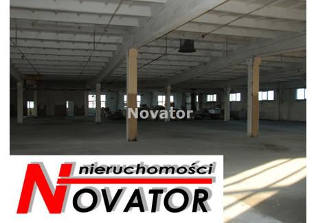 Magazyn do wynajęcia - Centrum, Bydgoszcz, Bydgoszcz M., 500 m², 6000 PLN, NET-NOV-HW-116253