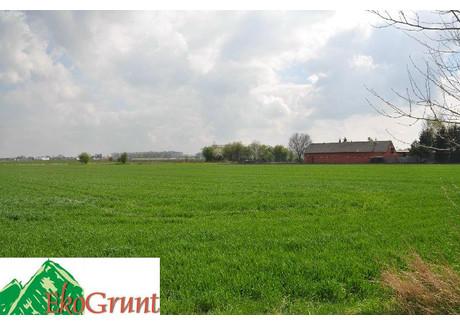 Działka na sprzedaż - Żórawina, Wrocławski, 40 000 m², 10 000 000 PLN, NET-EGM000346