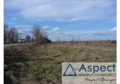 Działka na sprzedaż - Dąbie, Szczecin, 4020 m², 603 000 PLN, NET-ASP20282
