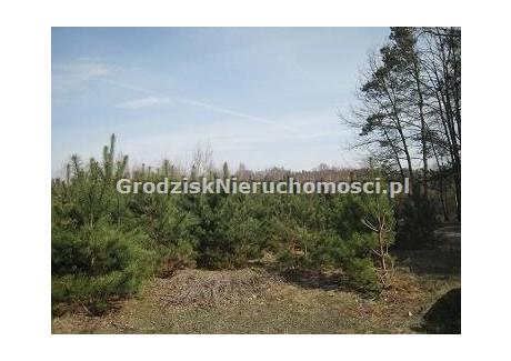 Działka na sprzedaż - Grodzisk Mazowiecki, Grodziski, 1465 m², 220 000 PLN, NET-GRO-GS-470