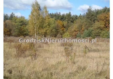 Działka na sprzedaż - Czarny Las, Grodzisk Mazowiecki, Grodziski, 1500 m², 140 000 PLN, NET-GRO-GS-1092