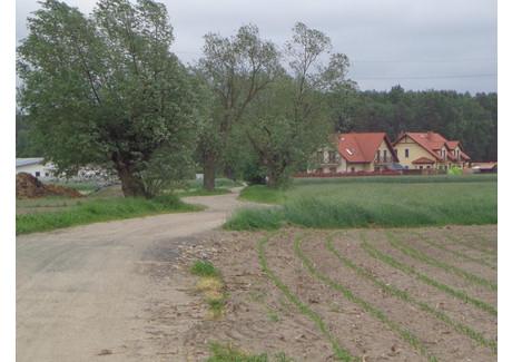 Działka na sprzedaż - Polna Gołuski, Dopiewo (gm.), Poznański (pow.), 889 m², 100 000 PLN, NET-11