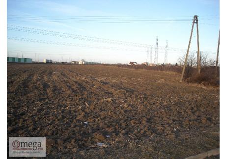 Działka na sprzedaż - Biała Podlaska, Biała Podlaska M., 17 100 m², 769 500 PLN, NET-OMW-GS-2999
