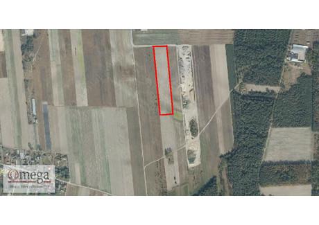 Działka na sprzedaż - Sielczyk, Biała Podlaska, Biała Podlaska M., 18 986 m², 284 790 PLN, NET-OMW-GS-3572