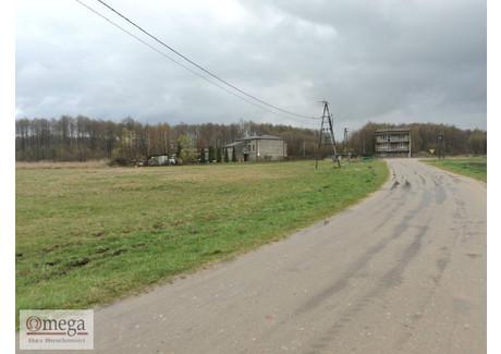 Działka na sprzedaż - Józefin, Kotuń, Siedlecki, 6500 m², 325 000 PLN, NET-OMG-GS-45068