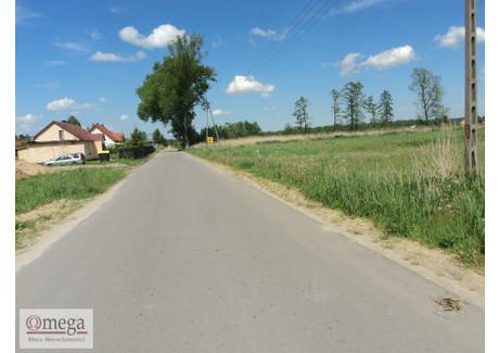 Działka na sprzedaż - Jagodnia, Siedlce, Siedlecki, 16 319 m², 200 000 PLN, NET-OMG-GS-45134