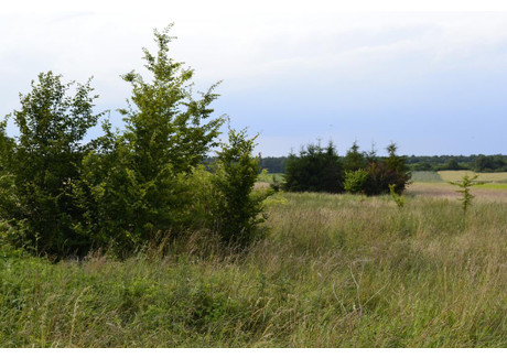 Działka na sprzedaż - Kleśniska, Lipie (gm.), Kłobucki (pow.), 4747 m², 142 000 PLN, NET-16347772