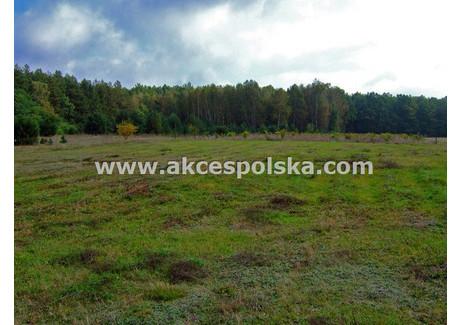 Działka na sprzedaż - Nadarzyńska Żółwin, Brwinów, Pruszkowski, 982 m², 265 000 PLN, NET-GS-6059-1