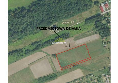 Działka na sprzedaż - Dąbrowa Tarnowska, Dąbrowski, 6737 m², 360 000 PLN, NET-AP2-GS-9450