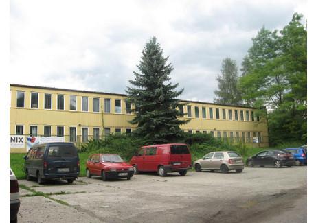 Centrum dystrybucyjne na sprzedaż - Rozrywka 1 Prądnik Czerwony, Kraków, 3937,7 m², 4 000 000 PLN, NET-9