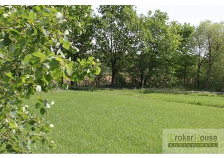 Działka na sprzedaż - Kotórz Wielki, Turawa, Opolski, 970 m², 97 000 PLN, NET-3146