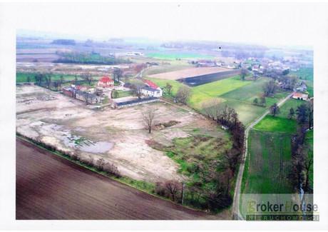 Działka na sprzedaż - Dębowa, Reńska Wieś, Kędzierzyńsko-Kozielski, 52 091 m², 1 990 000 PLN, NET-3683