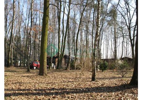 Działka na sprzedaż - Magdalenka, Lesznowola, Piaseczyński, 1200 m², 730 000 PLN, NET-61266
