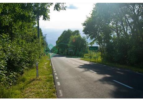 Działka na sprzedaż - Duchnów, Wiązowna, Otwocki, 4553 m², 1 138 250 PLN, NET-58828