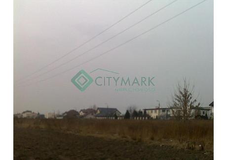 Działka na sprzedaż - Raszyn, Pruszkowski, 10 000 m², 4 990 000 PLN, NET-61417