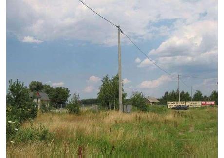 Działka na sprzedaż - Stara Wieś, Nadarzyn, Pruszkowski, 55 700 m², 3 150 000 Euro (13 639 500 PLN), NET-45463