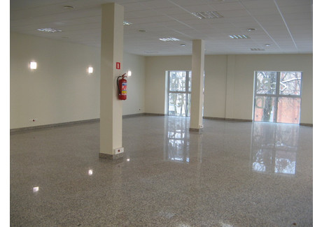 Biuro do wynajęcia - Deptak, Zielona Góra, 250 m², 17 500 PLN, NET-PAW-RE43-669-34493