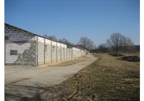 Komercyjne na sprzedaż - Grabowiec, Zielona Góra, Zielonogórski, 1274 m², 259 000 PLN, NET-JUS-RE51-758-43536