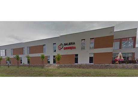 Komercyjne do wynajęcia - Osiedle, Zielona Góra, Zielonogórski, 45 m², 2250 PLN, NET-JUS-RE43-758-35885