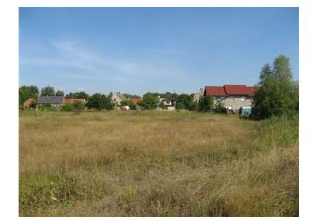 Działka na sprzedaż - obok nr 12 Zakęcie, Nowa Sól, Nowosolski, 1168 m², 61 000 PLN, NET-6-RE31-669-29995