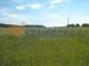 Działka na sprzedaż - Przytok, Zabór, Zielonogórski, 2868 m², 200 760 PLN, NET-AGN-RE31-669-58867