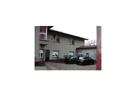 Komercyjne na sprzedaż - Centrum, Zielona Góra, Zielonogórski, 270 m², 1 200 000 PLN, NET-JUS-RE51-758-39047