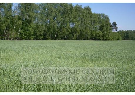 Działka na sprzedaż - Zakroczym, Śniadowo, Nowodworski, 17 700 m², 265 000 PLN, NET-549/251/ODzS