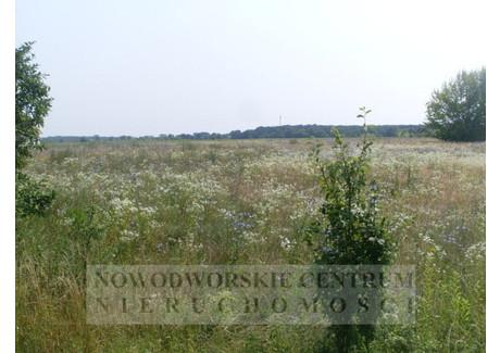 Działka na sprzedaż - Boża Wola Nowy Dwór Mazowiecki, Nowy Dwór Mazowiecki, Nowodworski, 26 500 m², 2 782 000 PLN, NET-569/251/ODzS