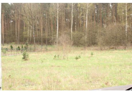 Działka na sprzedaż - Płoty, Czerwieńsk, Zielonogórski, 1200 m², 162 000 PLN, NET-1730297