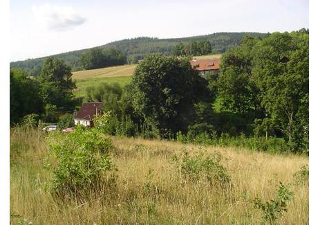 Działka na sprzedaż - Szklarska Poręba, Jeleniogórski (pow.), 5700 m², 117 000 PLN, NET-JGJP-772