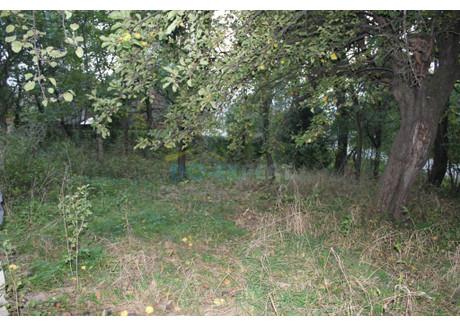 Działka na sprzedaż - Stoszowice, Stoszowice (gm.), Ząbkowicki (pow.), 2000 m², 75 000 PLN, NET-USt-0174