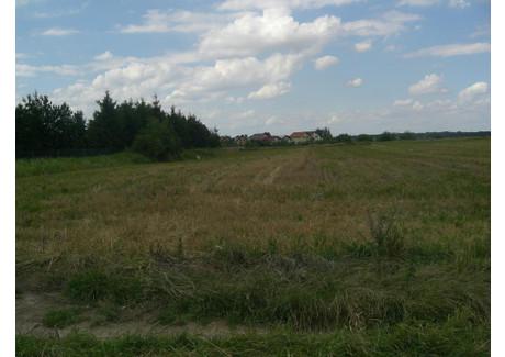 Działka na sprzedaż - Dzierżoniów, Dzierżoniowski (pow.), 990 m², 85 000 PLN, NET-US-0085D