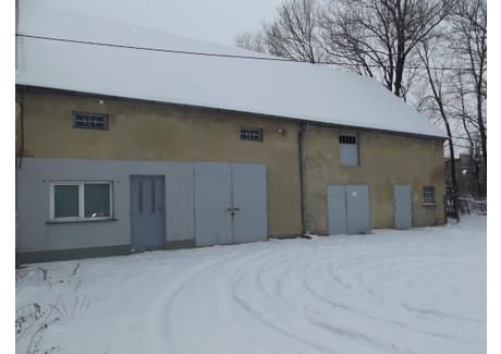 Lokal handlowy na sprzedaż - Piława Dolna, Dzierżoniów (gm.), Dzierżoniowski (pow.), 120 m², 130 000 PLN, NET-DS-123D