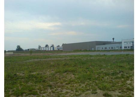 Działka na sprzedaż - Miękinia, Średzki, 27 100 m², 3 500 000 PLN, NET-14951