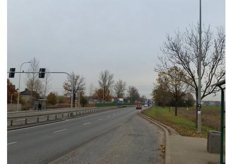 Działka na sprzedaż - Długołęka, Wrocławski, 4000 m², 800 000 PLN, NET-16751