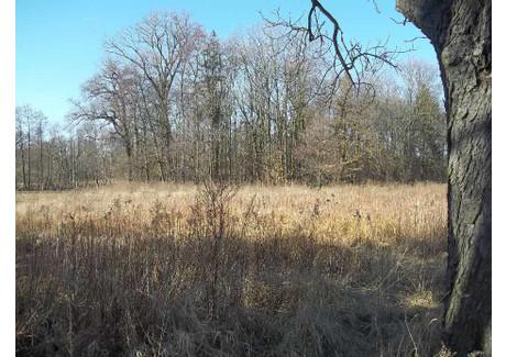 Działka na sprzedaż - Długołęka, Wrocławski, 2597 m², 350 000 PLN, NET-16645