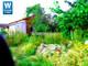 Dom na sprzedaż - OPALENICA,Buk,nowy Tomyśl Opalenica, Nowotomyski, 50 m², 129 000 PLN, NET-DS-269414-41
