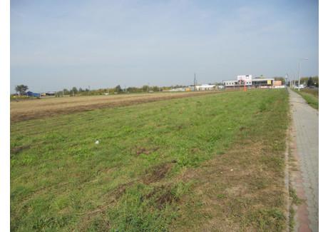 Działka na sprzedaż - Dębica, Dębicki (pow.), 56 500 m², 15 255 000 PLN, NET-24/2012