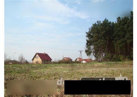 Działka na sprzedaż - Os. Kwiatowe Modrzyca, Nowa Sól, 10 163 m², 370 000 PLN, NET-gzs5741873